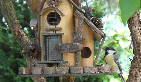 Decorative Bird Feeders