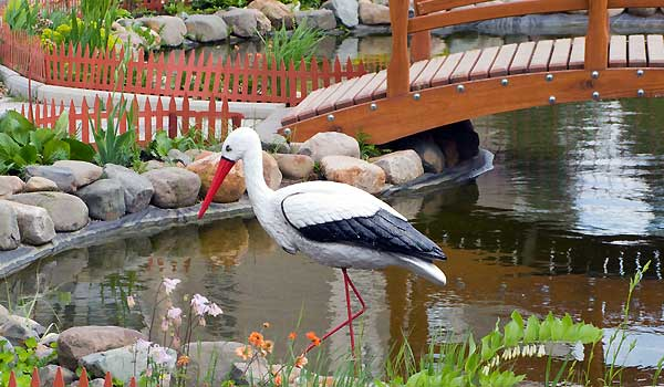 Designing A Fish Pond For Your Garden