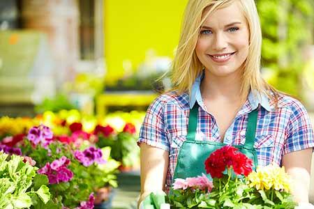 Perennial Flower Gardening Tips
