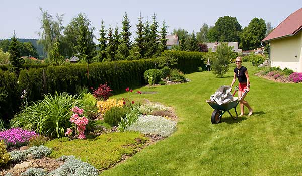 Gardening Made Easy: Your Guide To A Beautiful Garden