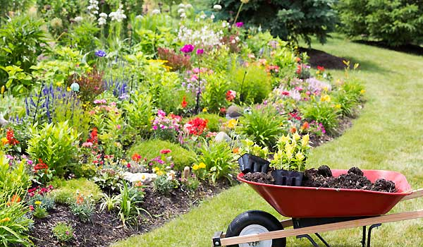 Organic Gardening For Natural Living
