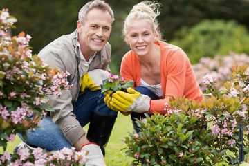 4 Steps To Successful Gardening: Planning, Preparation, Planting & Maintenance