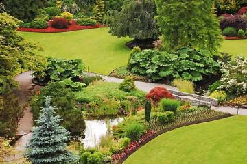 Tree Gardening - Choosing And Planting The Right Tree For Your Yard
