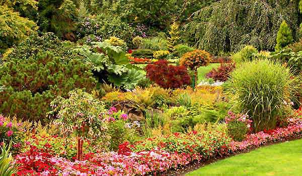 Xeriscaping - Drought Tolerant Gardening And Landscaping